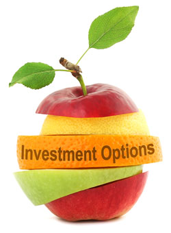 Investment Options (Canada